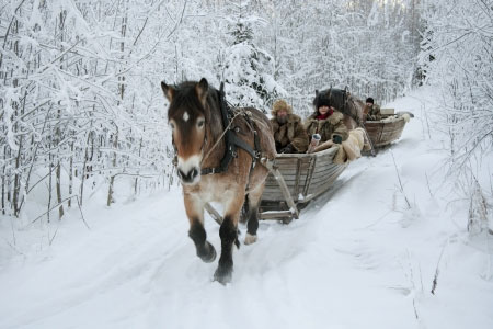 nakenmassage stockholm knulla med häst
