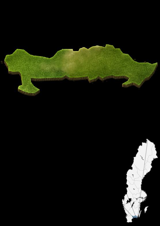 kartavbild