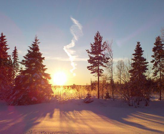 Landskapet Västerbotten